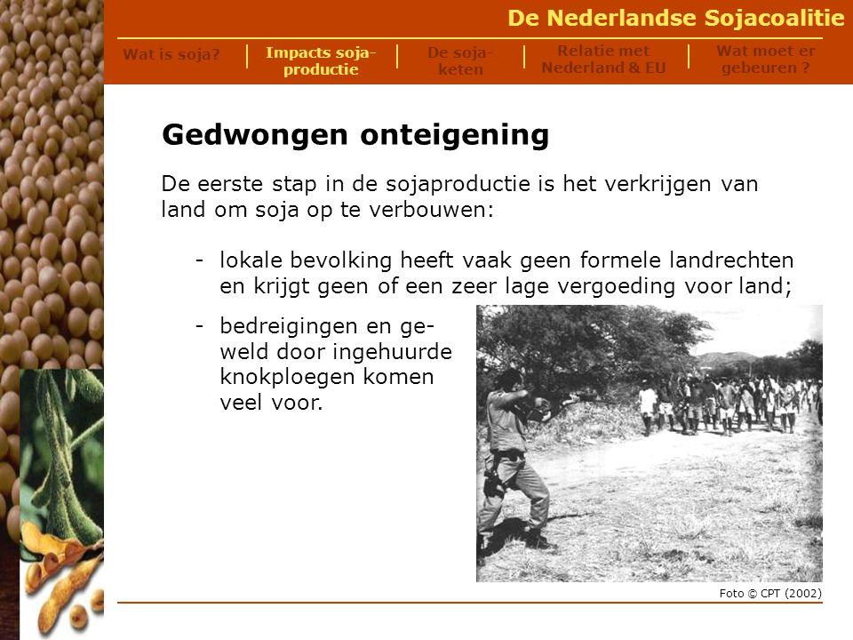 De Nederlandse Sojacoalitie Gedwongen onteigening Onteigende boer in Piauí, Brazilië Ik had 122 hectare land......