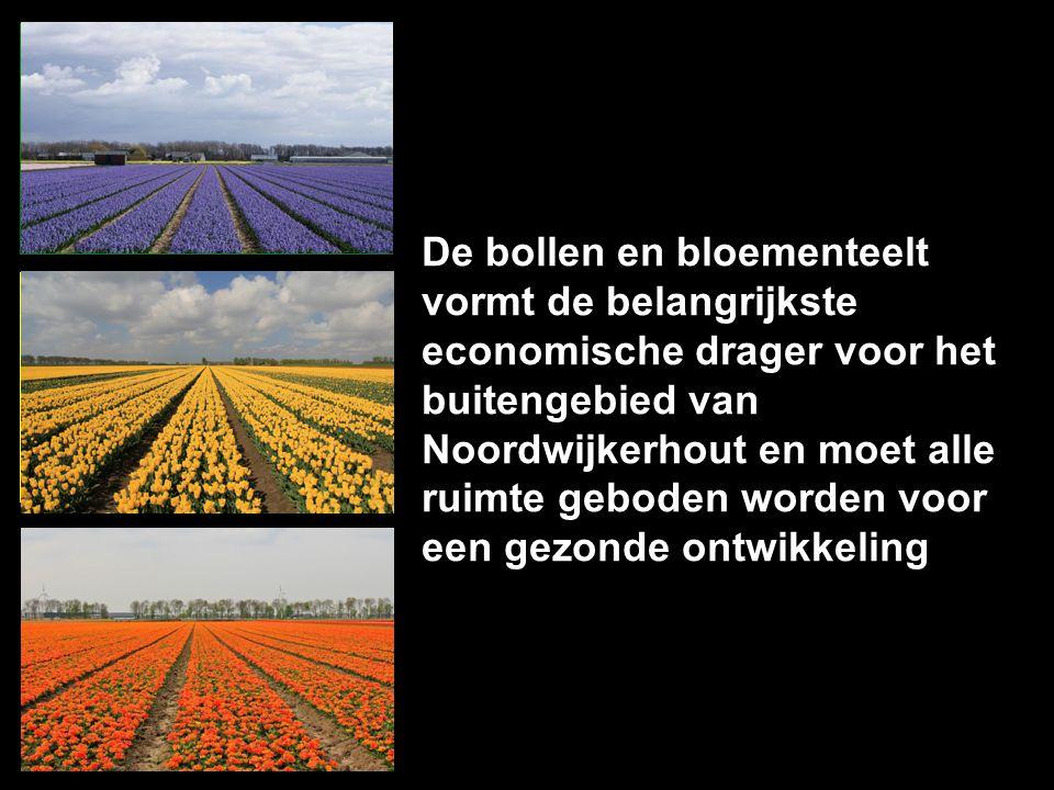 OVERAL OP GESCHIKTE PLAATSEN NERGENS De bollen en bloementeelt vormt de belangrijkste economische drager voor het buitengebied van Noordwijkerhout en moet alle ruimte geboden worden voor een gezonde ontwikkeling