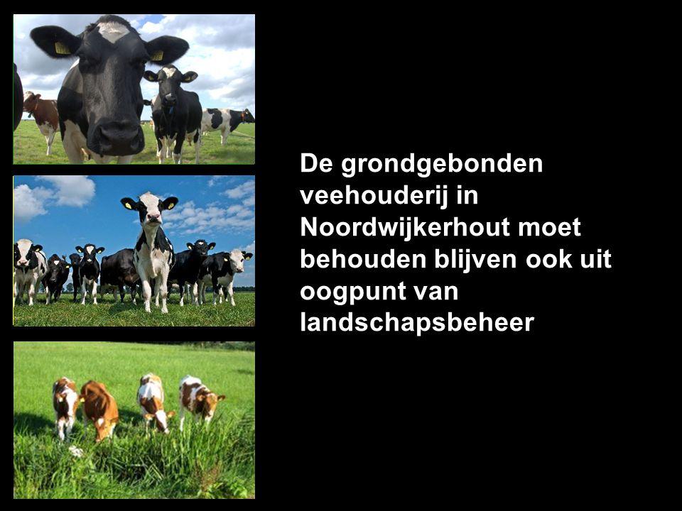 De grondgebonden veehouderij in Noordwijkerhout moet behouden blijven ook uit oogpunt van landschapsbeheer EENS niet koste wat kost ONEENS