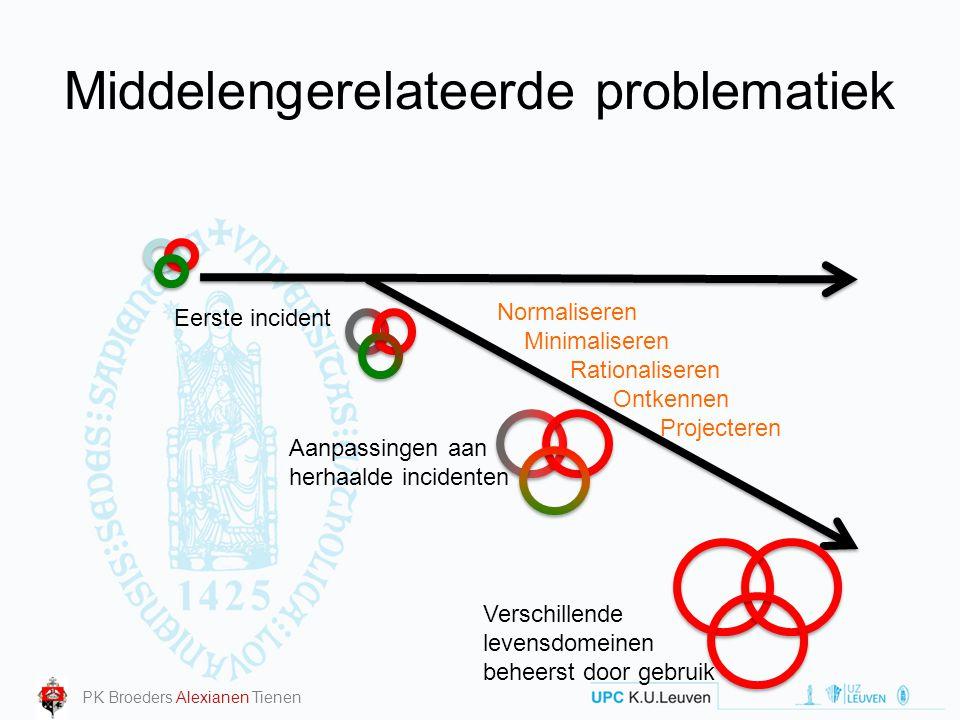 Middelengerelateerde problematiek Eerste incident Verschillende levensdomeinen beheerst door gebruik Aanpassingen aan herhaalde incidenten Normalisere