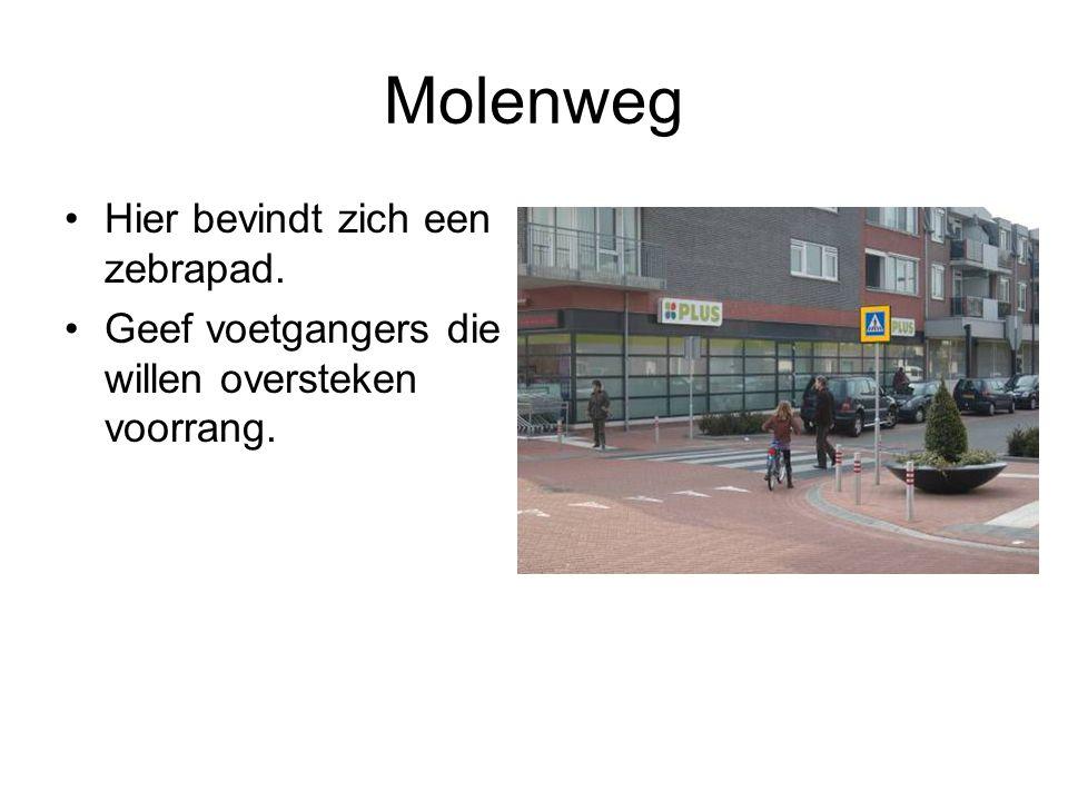 Molenweg Hier bevindt zich een zebrapad. Geef voetgangers die willen oversteken voorrang.