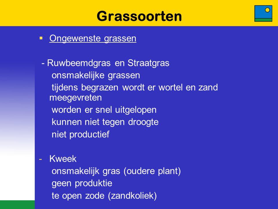 Grassoorten  Ongewenste grassen - Ruwbeemdgras en Straatgras onsmakelijke grassen tijdens begrazen wordt er wortel en zand meegevreten worden er snel