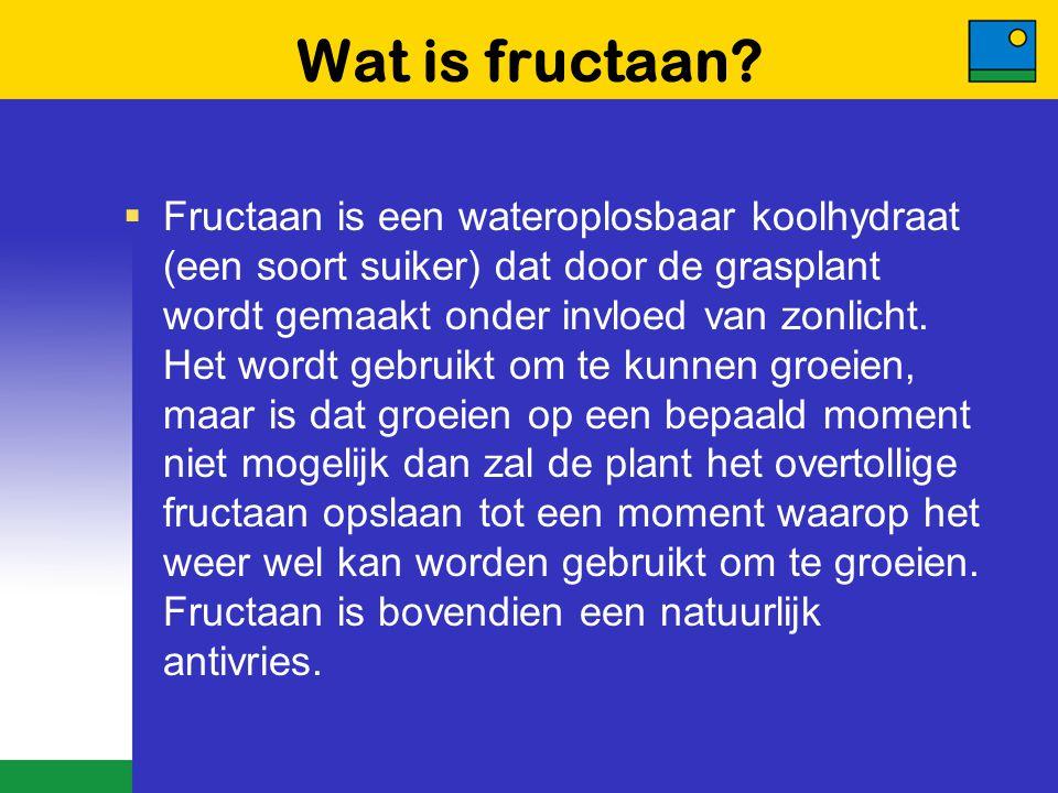 Wat is fructaan?  Fructaan is een wateroplosbaar koolhydraat (een soort suiker) dat door de grasplant wordt gemaakt onder invloed van zonlicht. Het w