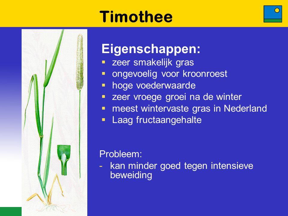 Timothee Eigenschappen:  zeer smakelijk gras  ongevoelig voor kroonroest  hoge voederwaarde  zeer vroege groei na de winter  meest wintervaste gr