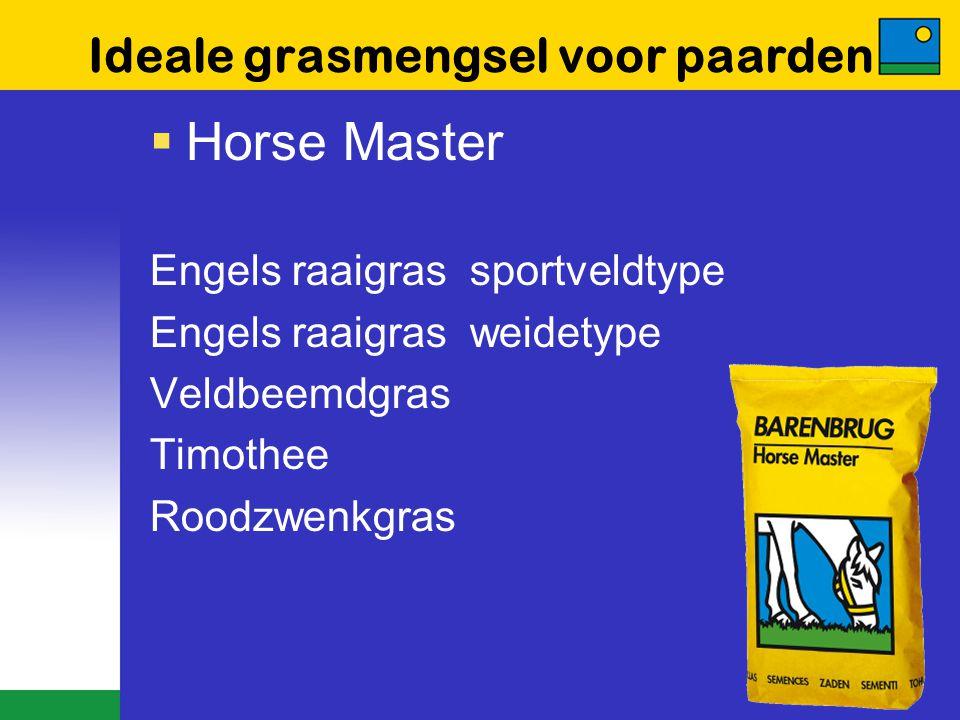 Ideale grasmengsel voor paarden  Horse Master Engels raaigras sportveldtype Engels raaigras weidetype Veldbeemdgras Timothee Roodzwenkgras