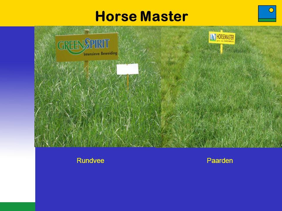 Horse Master Rundvee Paarden