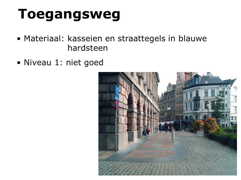 Toegangsweg Materiaal: kasseien en straattegels in blauwe hardsteen Niveau 1: niet goed
