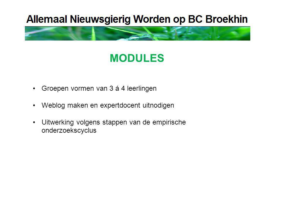 MODULES Groepen vormen van 3 á 4 leerlingen Weblog maken en expertdocent uitnodigen Uitwerking volgens stappen van de empirische onderzoekscyclus