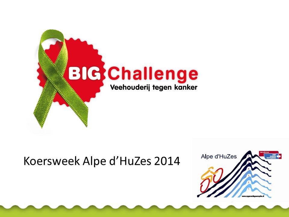 Koersweek Alpe d'HuZes 2014
