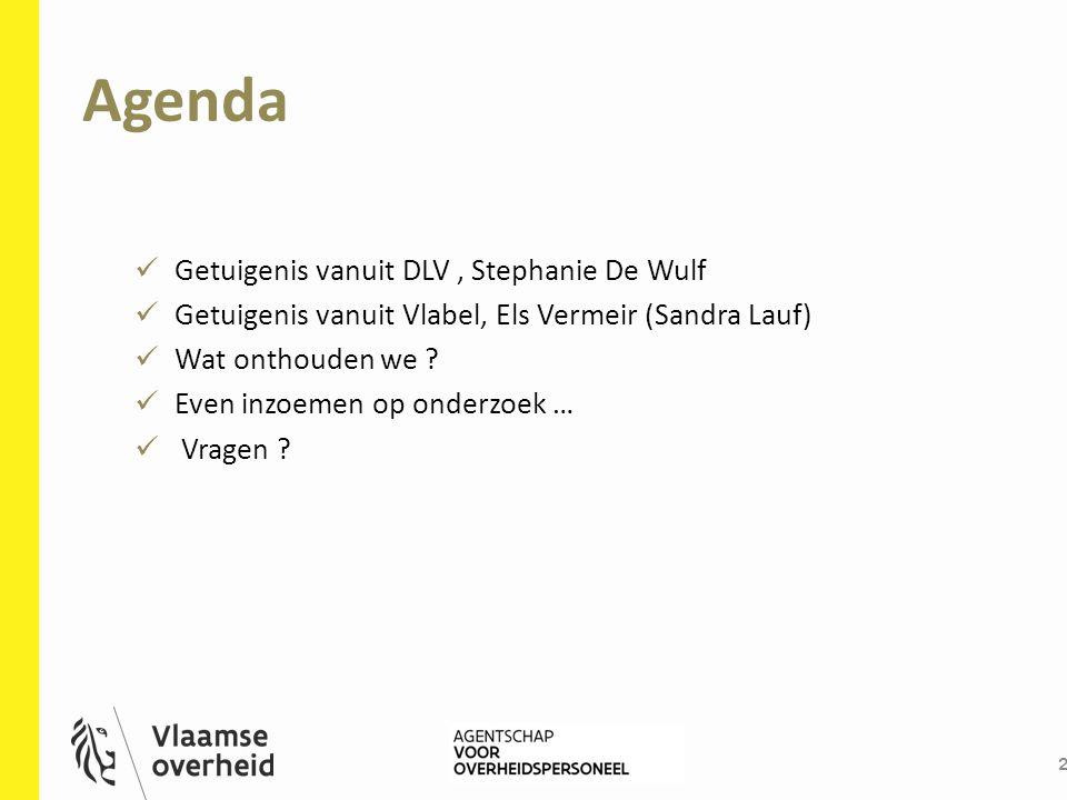 Agenda 2 Getuigenis vanuit DLV, Stephanie De Wulf Getuigenis vanuit Vlabel, Els Vermeir (Sandra Lauf) Wat onthouden we ? Even inzoemen op onderzoek …