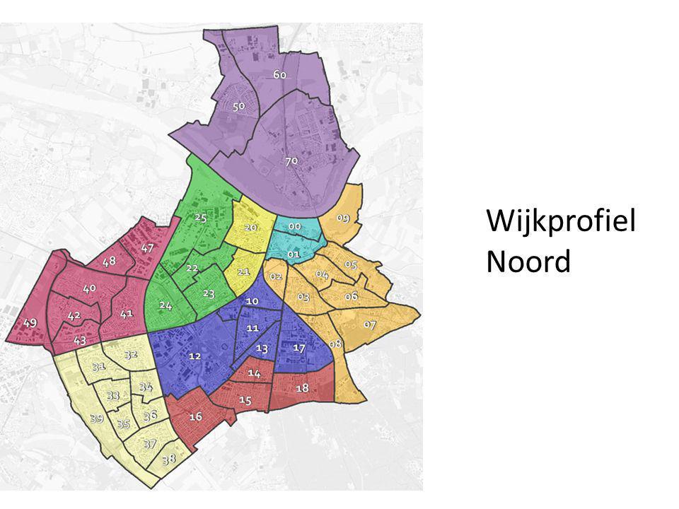 Leefstijlen in Nijmegen Noord Veel 'zelfredzamen': zelf leven inrichten, genoeg geld, mooi huis, touwtjes in eigen handen.