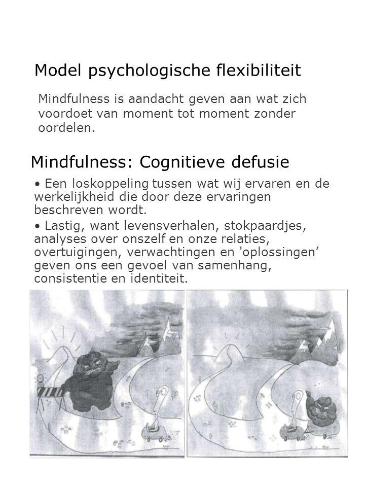Model psychologische flexibiliteit Mindfulness is aandacht geven aan wat zich voordoet van moment tot moment zonder oordelen. Mindfulness: Cognitieve