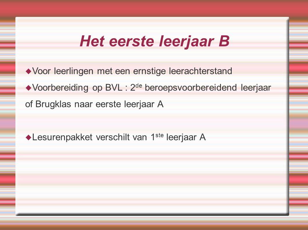 Het eerste leerjaar B  Voor leerlingen met een ernstige leerachterstand  Voorbereiding op BVL : 2 de beroepsvoorbereidend leerjaar of Brugklas naar