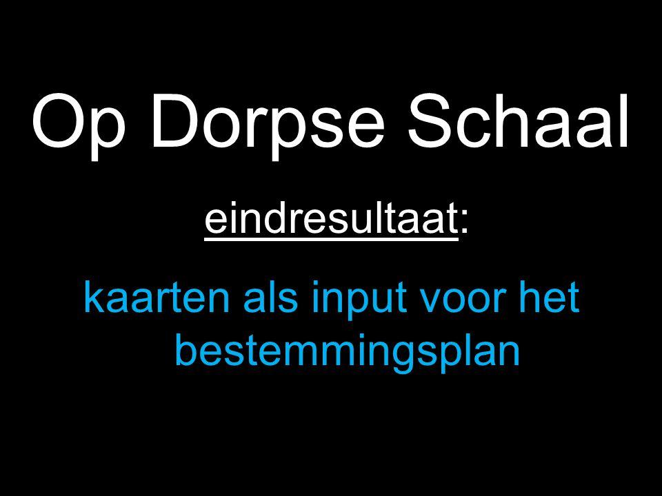 Op Dorpse Schaal eindresultaat: kaarten als input voor het bestemmingsplan