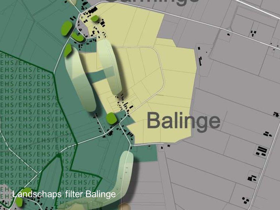 Landschaps filter Balinge
