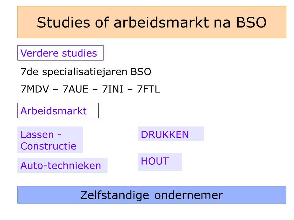 Studies of arbeidsmarkt na BSO Verdere studies Arbeidsmarkt Lassen - Constructie Auto-technieken DRUKKEN HOUT 7de specialisatiejaren BSO 7MDV – 7AUE – 7INI – 7FTL Zelfstandige ondernemer