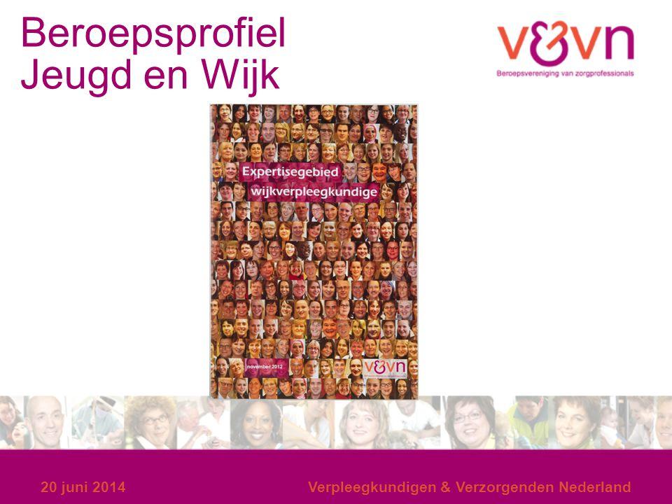 Beroepsprofiel Jeugd en Wijk 20 juni 2014Verpleegkundigen & Verzorgenden Nederland
