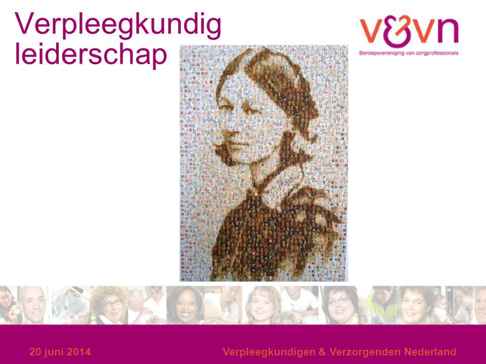 Verpleegkundig leiderschap 20 juni 2014Verpleegkundigen & Verzorgenden Nederland