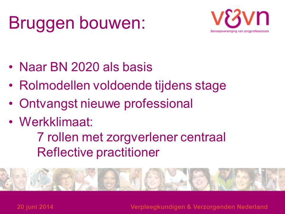 Bruggen bouwen: Naar BN 2020 als basis Rolmodellen voldoende tijdens stage Ontvangst nieuwe professional Werkklimaat: 7 rollen met zorgverlener centra
