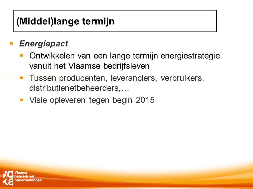  Energiepact  Ontwikkelen van een lange termijn energiestrategie vanuit het Vlaamse bedrijfsleven  Tussen producenten, leveranciers, verbruikers, distributienetbeheerders,…  Visie opleveren tegen begin 2015 (Middel)lange termijn