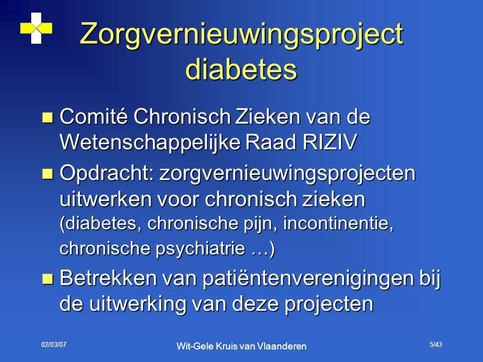 02/03/07 Wit-Gele Kruis van Vlaanderen 5/43 Zorgvernieuwingsproject diabetes Comité Chronisch Zieken van de Wetenschappelijke Raad RIZIV Comité Chroni