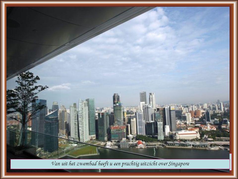 Maar wat veel spectaculairder is, is het 55 verdiepingen hoge en 150 meter lange zwembad op het dak van het hotel Het Sands sky park is 12400m² groot en daarmee groter dan de eifeltoren op zijn kant; Het biedt plaats voor 3900 gasten