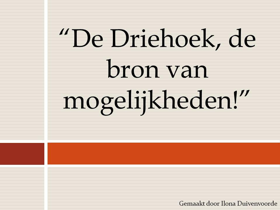 """Gemaakt door Ilona Duivenvoorde """"De Driehoek, de bron van mogelijkheden!"""""""