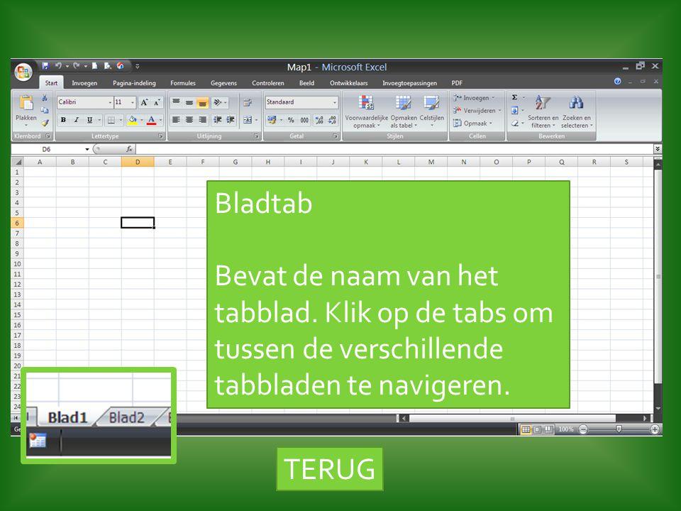 TERUG Bladtab Bevat de naam van het tabblad. Klik op de tabs om tussen de verschillende tabbladen te navigeren.
