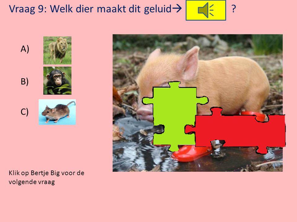 Klik op Bertje Big voor de volgende vraag Vraag 8: Waar moet Bertje Big in het kippenhok op slapen? A) Op stro B) Op gras C) Op een stok