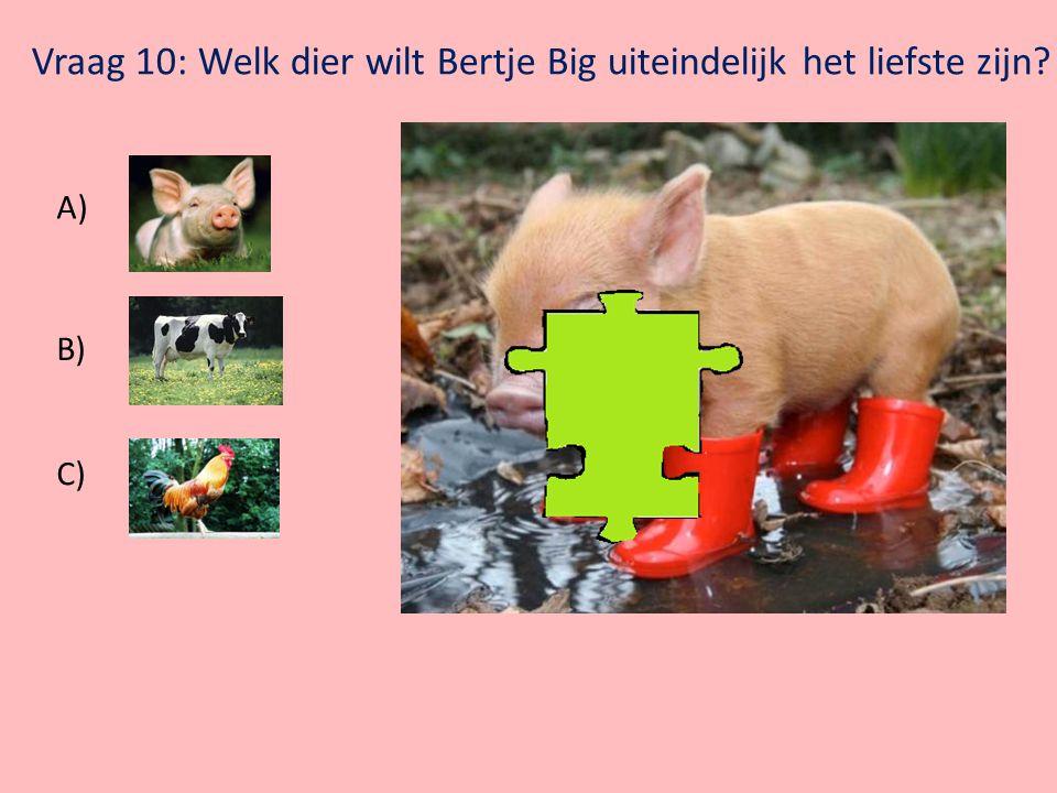 Klik op Bertje Big voor de volgende vraag Vraag 9: Welk dier maakt dit geluid  ? A) B) C)