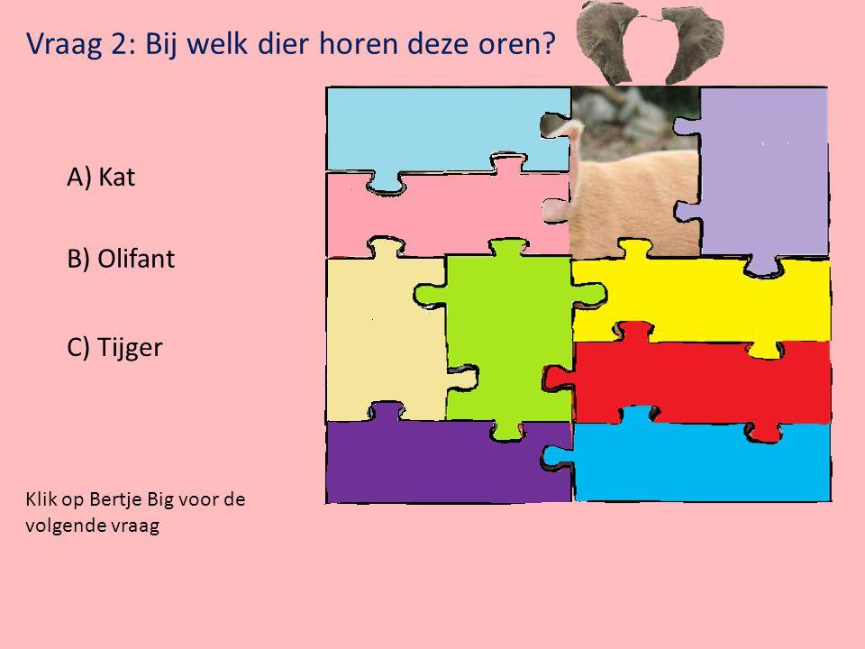 Vraag 1: Welk dier maakt het goede geluid? Klik op het plaatje voor het geluid A)Eend B) Hond C) Paard Klik op Bertje Big voor de volgende vraag