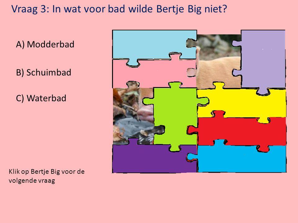 Vraag 2: Bij welk dier horen deze oren? A) Kat B) Olifant C) Tijger Klik op Bertje Big voor de volgende vraag