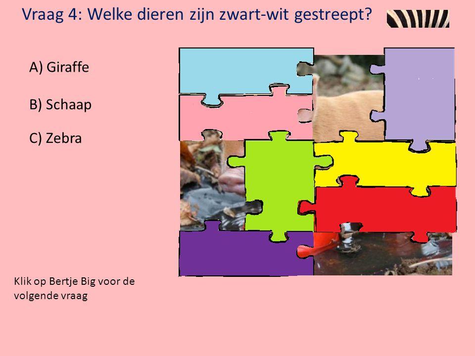 Vraag 3: In wat voor bad wilde Bertje Big niet? A) Modderbad B) Schuimbad C) Waterbad