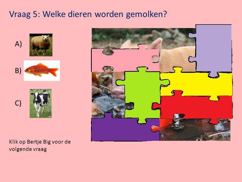 Klik op Bertje Big voor de volgende vraag Vraag 4: Welke dieren zijn zwart-wit gestreept? A) Giraffe B) Schaap C) Zebra