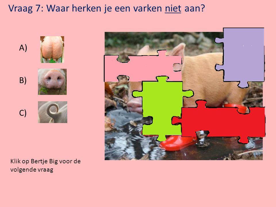 Klik op Bertje Big voor de volgende vraag Vraag 6: Welk dier is Bertje Big niet tegen gekomen? A) B) C)