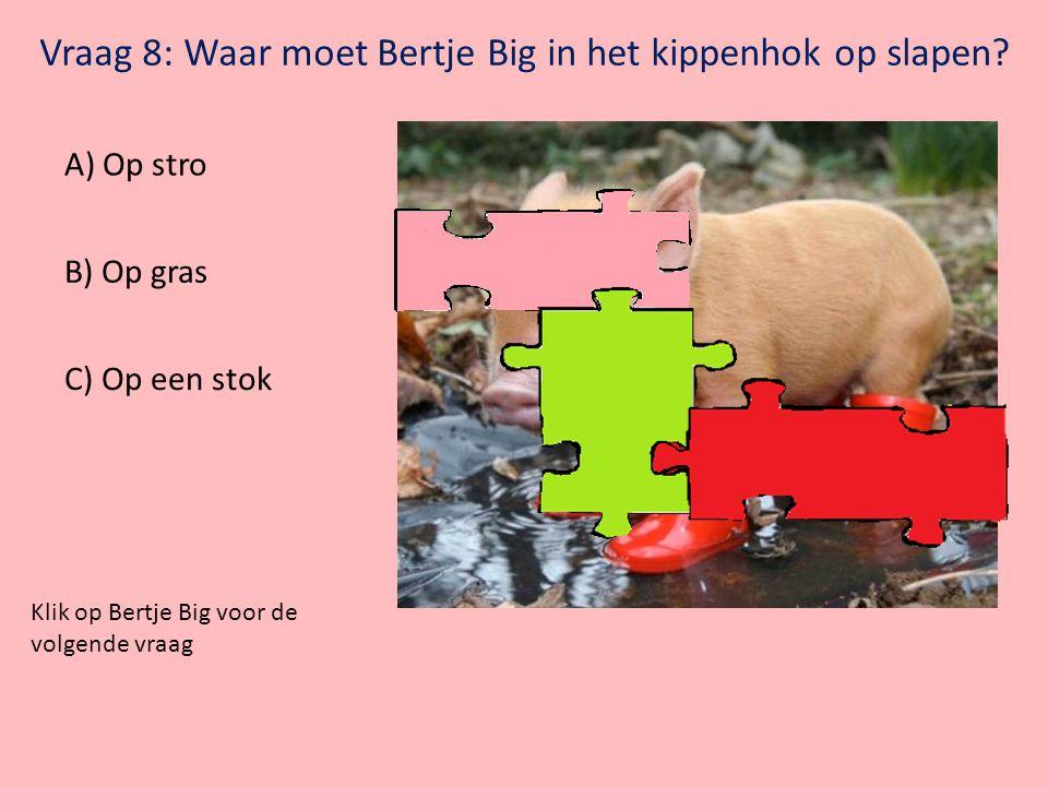 Klik op Bertje Big voor de volgende vraag Vraag 7: Waar herken je een varken niet aan? A) B) C)