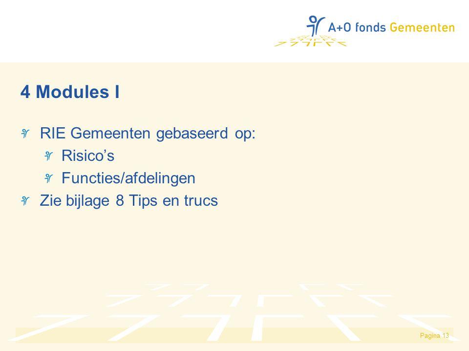 Pagina 13 4 Modules I RIE Gemeenten gebaseerd op: Risico's Functies/afdelingen Zie bijlage 8 Tips en trucs