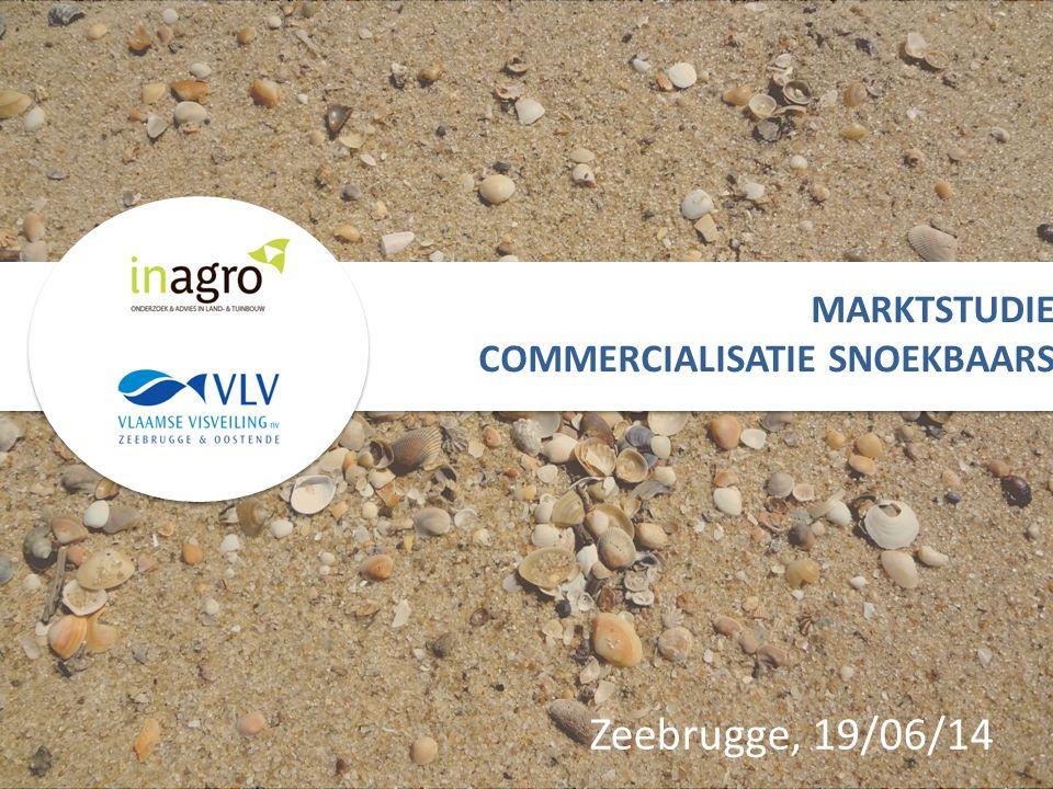 Zeebrugge, 19/06/14 MARKTSTUDIE COMMERCIALISATIE SNOEKBAARS