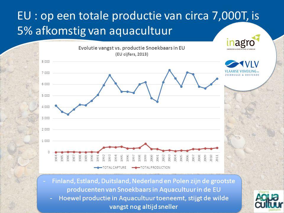 EU : op een totale productie van circa 7,000T, is 5% afkomstig van aquacultuur -Finland, Estland, Duitsland, Nederland en Polen zijn de grootste produ