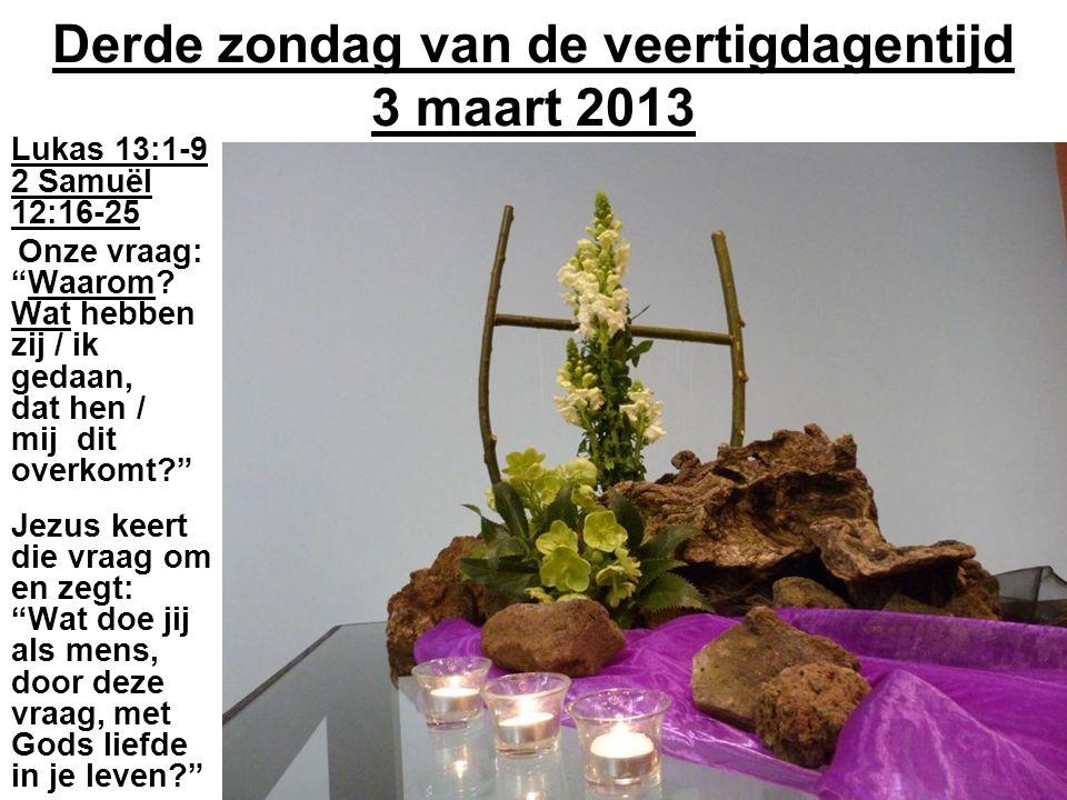 """Derde zondag van de veertigdagentijd 3 maart 2013 Lukas 13:1-9 2 Samuël 12:16-25 Onze vraag: """"Waarom? Wat hebben zij / ik gedaan, dat hen / mij dit ov"""