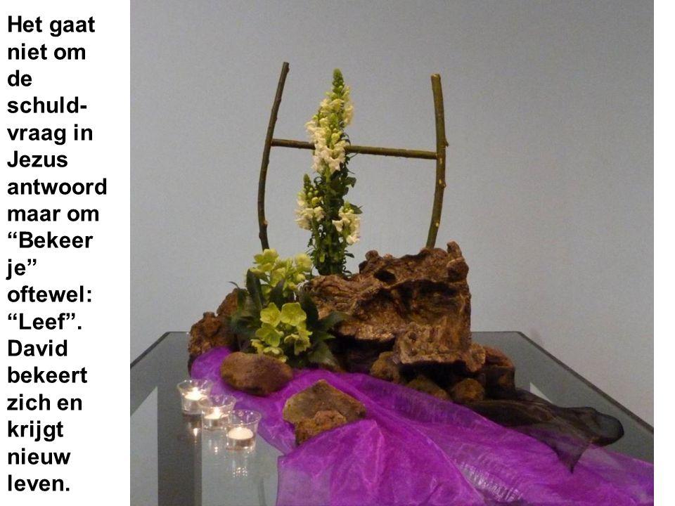 """Het gaat niet om de schuld- vraag in Jezus antwoord maar om """"Bekeer je"""" oftewel: """"Leef"""". David bekeert zich en krijgt nieuw leven."""