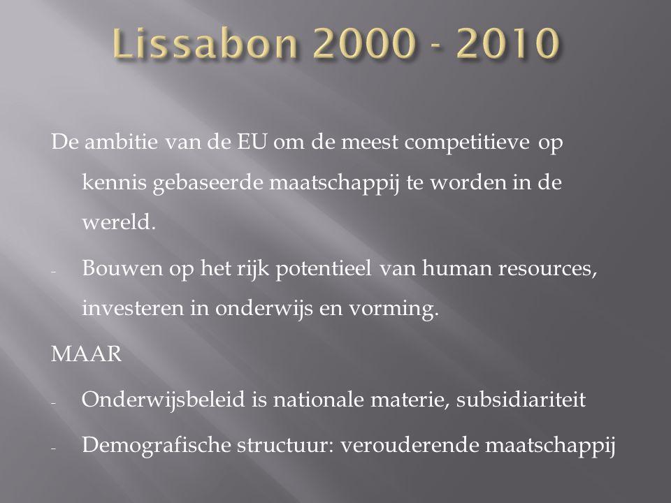 De ambitie van de EU om de meest competitieve op kennis gebaseerde maatschappij te worden in de wereld. - Bouwen op het rijk potentieel van human reso