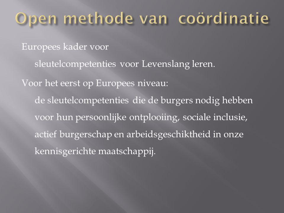 Europees kader voor sleutelcompetenties voor Levenslang leren. Voor het eerst op Europees niveau: de sleutelcompetenties die de burgers nodig hebben v