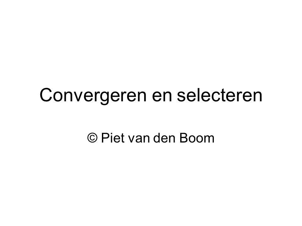 Convergeren en selecteren © Piet van den Boom