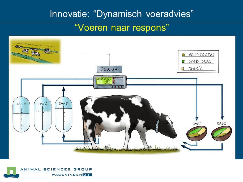 Innovatie: Dynamisch voeradvies Voeren naar respons