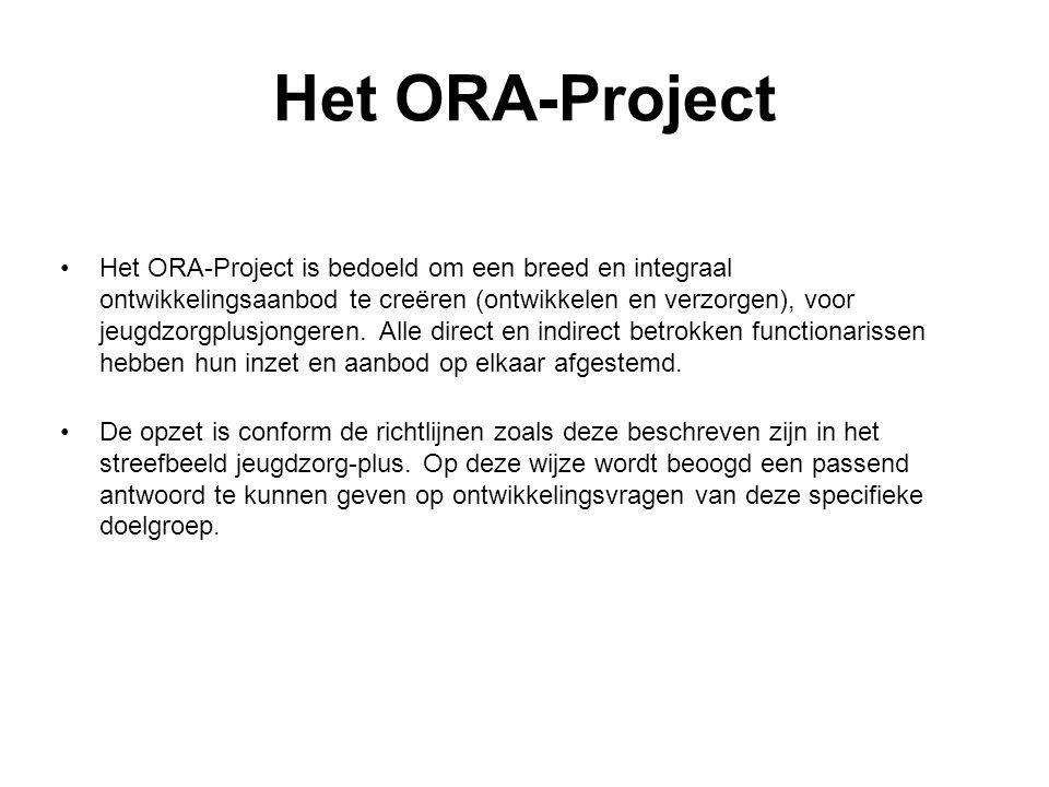 Het ORA-Project Het ORA-Project is bedoeld om een breed en integraal ontwikkelingsaanbod te creëren (ontwikkelen en verzorgen), voor jeugdzorgplusjong