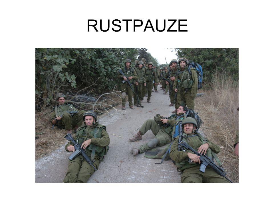 RUSTPAUZE