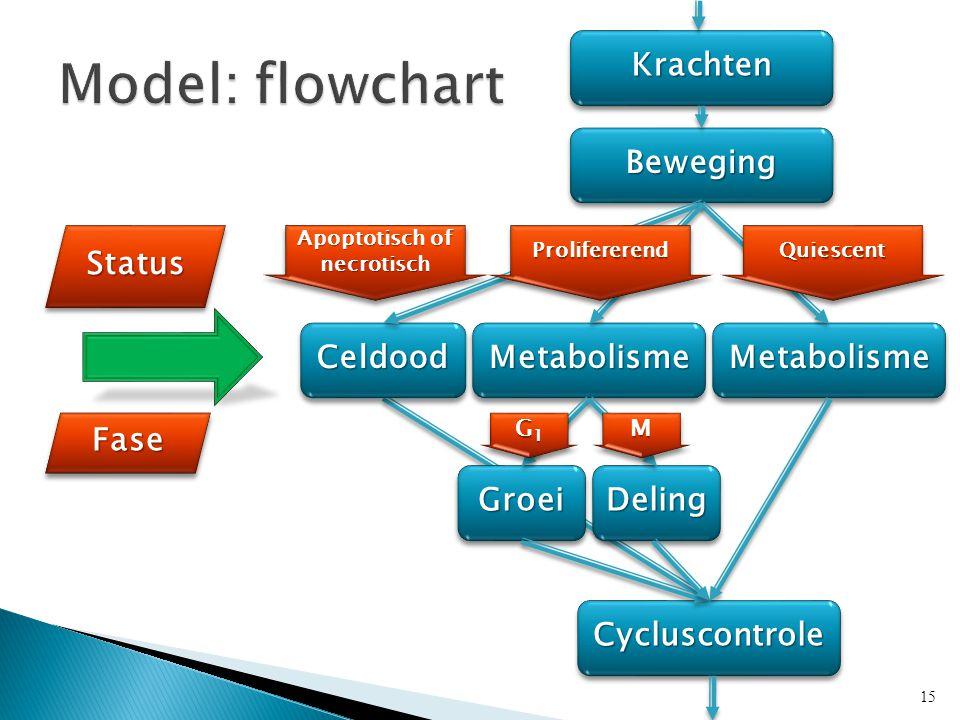 KrachtenKrachten BewegingBeweging MetabolismeMetabolisme CycluscontroleCycluscontrole StatusStatus FaseFase CeldoodCeldoodMetabolismeMetabolisme GroeiGroeiDelingDeling Apoptotisch of necrotisch G1G1G1G1 G1G1G1G1MM 15 ProlifererendProlifererendQuiescentQuiescent