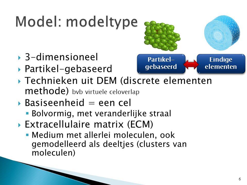 Partikel- gebaseerd Eindige elementen  3-dimensioneel  Partikel-gebaseerd  Technieken uit DEM (discrete elementen methode) bvb virtuele celoverlap  Basiseenheid = een cel  Bolvormig, met veranderlijke straal  Extracellulaire matrix (ECM)  Medium met allerlei moleculen, ook gemodelleerd als deeltjes (clusters van moleculen) 6