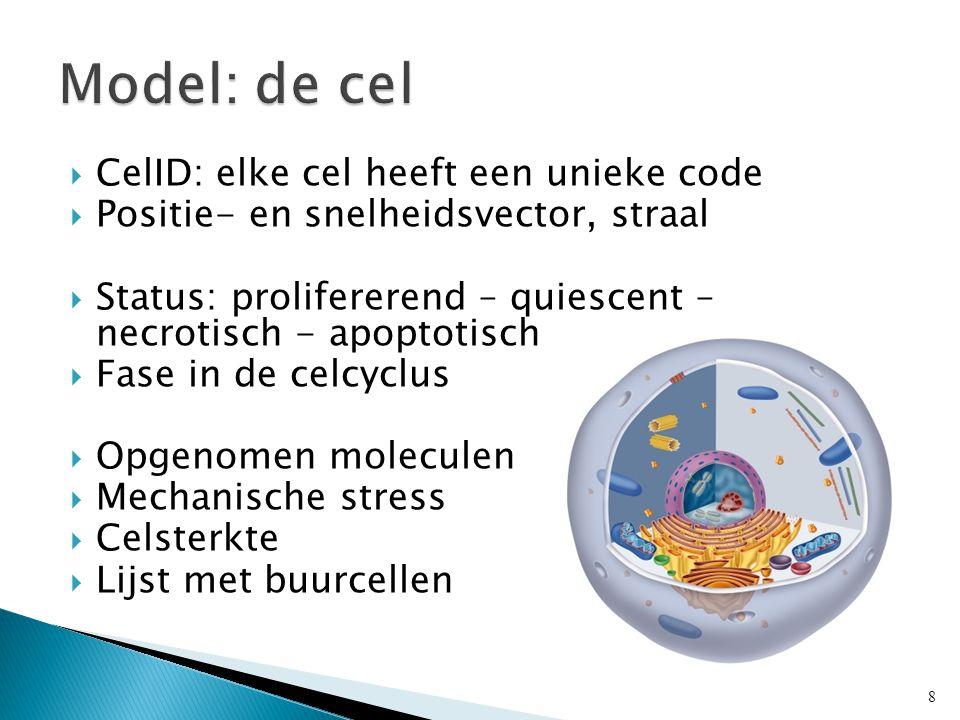  CelID: elke cel heeft een unieke code  Positie- en snelheidsvector, straal  Status: prolifererend – quiescent – necrotisch - apoptotisch  Fase in de celcyclus  Opgenomen moleculen  Mechanische stress  Celsterkte  Lijst met buurcellen 8
